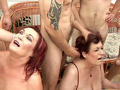 Chubby mature sluts sucking dick and fucking hardcore